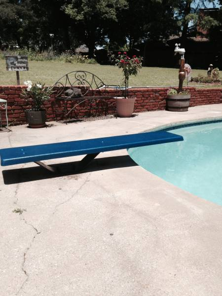 Coated Diving Board Color: Electric Blue